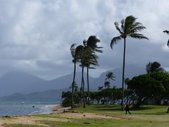 Kualoa Regional Park (jen-the-librarian) Tags: hawaii oahu kualoaregionalpark kāneʻohebay