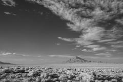 Pilot Peak, NV (infrared) (jkup) Tags: pilotpeak