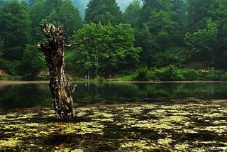 Lake Keremali Summertime
