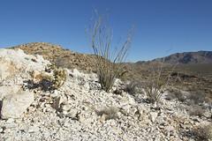 Quartz mine near Smoketree Wash (Joshua Tree National Park) Tags: california nationalpark mine desert joshuatree mining geology quartz