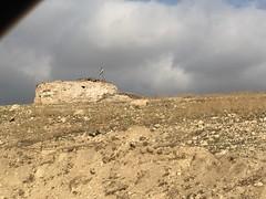 (sethfrantzman) Tags: people children seth women iraq graves fighters mass genocide kurdistan kurdish yezidi yazidi sinjar peshmerga ezidi yazidis shingal frantzman