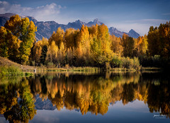 tetons_2016_38web (Jessica Haydahl Photography) Tags: grand teton national park mt moran landscape nikond810 nikon zeiss 21mm distagon sigma 150600mm sports long exposure formatthitech autumn