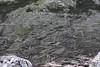 Trazos en el agua (manolovega) Tags: manolovega canon canon40d eos40d bulgaria lagosderila lagos rila algas