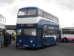 255, PRH 255G, Leyland Atlantean (1) (Andy Reeve-Smith) Tags: leyland atlantean roe roebody 255 prh255g kingstonuponhullcitytransport kingstonuponhull khct hull eastyorkshire yorkshire humberside streamlined corporationtransport showbus 2016 showbus2016 donington doningtonpark castledonington derby derbyshire derbys