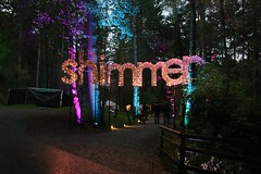 2016 - 14.10.16 Enchanted Forest - Pitlochry (13) (marie137) Tags: enchanted forest pitlochry mobrie137 scotland lights music people water reflection trees shows food fire drink pit patter shapes art abstract night sky tour family walk path bells smoke disco balls unusual whisperer bridge wood colour fun sculpture day amazing spectacular must see landscape faskally shimmer town