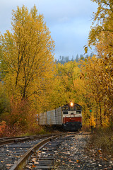 Morning in St. Maries (CN Southwell) Tags: st maries river railroad sw fall foliage