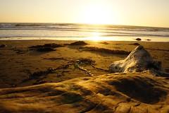 (florianselchow) Tags: beach landscape sunset cambria nex sony