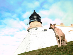 Point of Stoer lighthouse (Sarah Walker Photography) Tags: stoer lighthouse