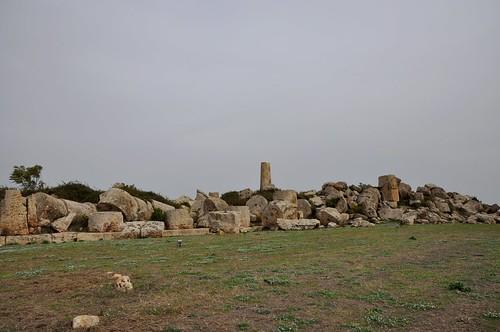 a1y. Selinunte (Sicilia-Italia). Ruinas del templo G o de Zeus