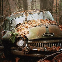 Autumn is the hardest season. The leaves are all falling, and they're falling like they're falling in love with the ground.   Andrea Gibson (allyson.marie) Tags: fall vintage junk autumn leaves discarded rust old car abandoned