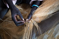 Fixing nets (FAOemergencies) Tags: fao food agriculture crops cultivation cultivators farmers farming fish foodsecurity sorghum aweil northernbahralgazal southsudan emergencies africa fisheries sourthsudan conflict crisis fisherers