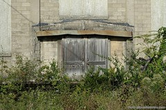 Doors to the past. more here: http://www.placesthatwere.com/2016/10/abandoned-lehigh-portland-cement.html #abandoned #industrialdecay #abandonedplaces #cement #rustbelt #oglesby #illinois #factory #doors #decay #reclaimedbynature #overgrown #woodendoor #p (placesthatwere) Tags: abandoned urbanexploration ghosttowns urbex rurex abandonedplaces forgottenplaces urbandecay decay beautifuldecay