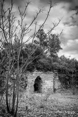 A Hole in the Wall (TreeRose Photography) Tags: hole wall tree barren dark blackandwhite ominous relic abandoned history ruins mining trees monochrome clouds outdoors arizona