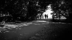 A couple in the park - Stratford Upon Avon, England - Black and white street photography (Giuseppe Milo (www.pixael.com)) Tags: streetphotography peaceful tranquil prints england fineart print street european wallart city faceless love contrast europe couple horizontal morning summer urban photo candid photograph bw photography stratforduponavon black park blackandwhite geotagged white unitedkingdom gb onsale