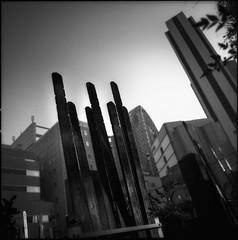 possession (TommyOshima) Tags: hasselblad distagon 50mm f4 kodak tmax100 100tmx tmax selfdeveloped 6x6 square grave autumn shinjuku skyscraper