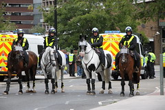 Mounted Police (Ian Press Photography) Tags: ipswich town football club portman road suffolk norwiich city fc 999 police emergency service services match old farm derby championship norfolk horse horses mounted colp london