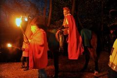 La-magia-del-bosco-di-notte-2016-62