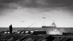 DSC03639-2 (De Hollena) Tags: angeln fishing holland ijmuiden jete lespaysbas mar meer mer mole noordholland noordzee nordholland nordsee northsea pier schiff schip sea see ship thenetherlands vissen zee rompeolas