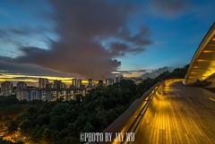 twilight (jaywu429) Tags: sony singapore sky sonya7r skyline sonycamera sunset sony1635mmf4 henderson waves clouds longexposure hdb bluehour landscape nightscape lights bridge dusk twilight urban