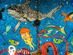 """Lights Up a Young Mind"" Bloomingdales Holiday Window Display, New York City (jag9889) Tags: 20161201 jag9889 usa color manhattan bloomingdales fish newyork outdoor 2016 christmas holiday light sealife ocean aquatic uppereastside surreal octopus window newyorkcity artwork neon art display windowdisplay sparkle chandelier bloomies departmentstore flagship lexingtonavenue ny nyc store storewindow ues unitedstates unitedstatesofamerica us mosaic sea"