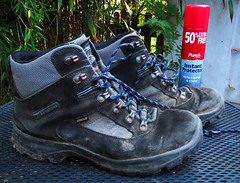 #17 Take a Hike Day (padswift) Tags: muddyboots walkingboots hiking hikingboots 1162016 116in2016