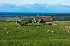burren (giovannaparisan) Tags: ireland irlanda eire stpatricksday cliffsofmoher galway liscannon countyclare burren munster kinvarra dunguaire