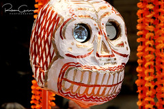Day of the Dead 2016 16 (part 1) (Ruben Gusman Photography) Tags: thenelsonatkinsmuseumofart mariachis diadelosmuertos dayofthedeadskulls skeletons death donquioto kansascity