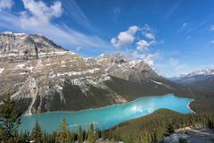 Lake Peyto (blaisingm) Tags: peyto lake canadian rockies ice road parkway icefields banff jasper