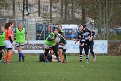 DSC_8898 (mbreevoort) Tags: rfchaarlem rugby rcthedukes brcbreda dioklrc thepickwickplayersdrc hookers goudarfc
