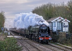 Only One (4486Merlin) Tags: duchessofsutherland semi 46233 england europe exlms lms8pduchess places railways signalbox steam transport unitedkingdom metheringham lincolnshire gbr cathedralsexpress eastmidlands