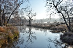 Frosty November morning in the Ozarks (i m. ritz) Tags: hawks cedarcreek mist water d7000 nikon fall creek frost missouri ozarks november