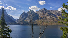 Jenny Lake (LG G4) (Jeffrey Sullivan) Tags: lg g4 mobile phone camera images smartphone cellphone california usa photo copyright 2015 jeff sullivan september road trip jackson lake rand teton national park jenny rocky mountains