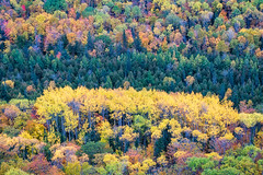 Colors From Above (Kevin Pihlaja) Tags: brockwaymountain copperharbor keweenaw upperpeninsula michigan autumn trees foliage fall fallcolors landscape nature valley