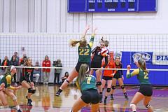 IMG_6690 (SJH Foto) Tags: girls volleyball high school allentown central catholic somerset team teen teenager net battle spike block action shot jump midair