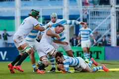 "Los Pumas vs Springboks • <a style=""font-size:0.8em;"" href=""http://www.flickr.com/photos/21603568@N02/20681535716/"" target=""_blank"">View on Flickr</a>"