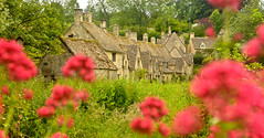 ARLINGTON ROW AGAIN (chris .p) Tags: uk summer england june nikon view cotswolds gloucestershire cotswold bibury 2015 d610 arlingtonrow