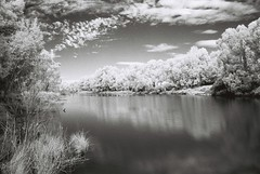 River (goodfella2459) Tags: white black film rollei analog 35mm river lens ir highlands nikon australia southern filter infrared 24mm af nikkor agfa milf f4 bowral hoya 400s r72 f28d burradoo