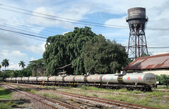Thailand - Chiang Mai - Station chronicle update (railasia) Tags: thailand watertower chiangmai infra srt 2015 goodswagon metergauge oiltransport stationchronicle