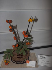 "Pumpkin & Peony leaves by Emiko Unno ""Koryu School"" (nano.maus) Tags: lauritzengardens japaneseflowerarrangement omahabotanicalsociety japaneseambiencefestival"