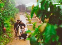 IMG_6232 (athingcalledlife) Tags: blackandwhite india green art nature rain photography colours lush coorg virajpet vsco