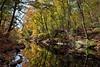 Bronx River Reflections (Eddie C3) Tags: nyc newyorkcity autumn bronx botanicalgardens nybg autumncolor newyorkbotanicalgarden nycparks bronxriver nybgforest