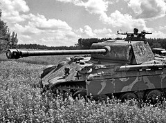 """Panther '534' • <a style=""""font-size:0.8em;"""" href=""""http://www.flickr.com/photos/81723459@N04/22616292452/"""" target=""""_blank"""">View on Flickr</a>"""