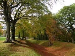 Antonine Wall - Watling Lodge, Tamfourhill, Falkirk (luckypenguin) Tags: autumn trees scotland historicscotland romanempire falkirk camelon tamfourhill antoninewall