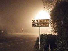 Mugellanean Milky Way in a Foggy Night (ettore_timi) Tags: fog florence bynight smartphone firenze toscana nebbia milkyway mugello borgosanlorenzo viadellatte