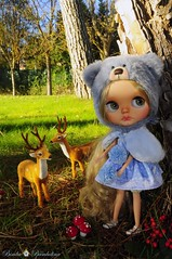 In the forest!! Lovely autumn!!