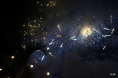 20-DSC01440 (Fursa) Tags: new eve marina bay singapore fireworks years 2016 overeasy fullertonbayhotel