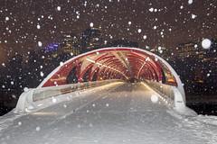 peace bridge_MG_8631 (warrengeorgebell) Tags: