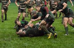 JAC_2272 (Wales_4eva) Tags: swansea wales rugby south union starch rfc gowerton waun waurnalwydd