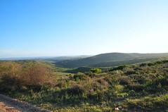 Kichaka Luxury Game Lodge (Gerry van Gent) Tags: kichakaluxurygamelodge grahamstown southafrica safari wildness