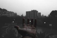 Cmo la lluvia dibuja las curvas de tu cuerpo (alexrf96) Tags: aleruiz alejandroruiz alejandroruizfernndezdeangulo alexrf96 foto fotografa photo photograph rain lluvia raining water agua sevilla seville andaluca andalusia espaa spain hand mano blancoynegro blanconegro blackandwhite blackwhite color colour contrast feelings dsenfoque notfocused pointfocused sentimientos cloudy nublado
